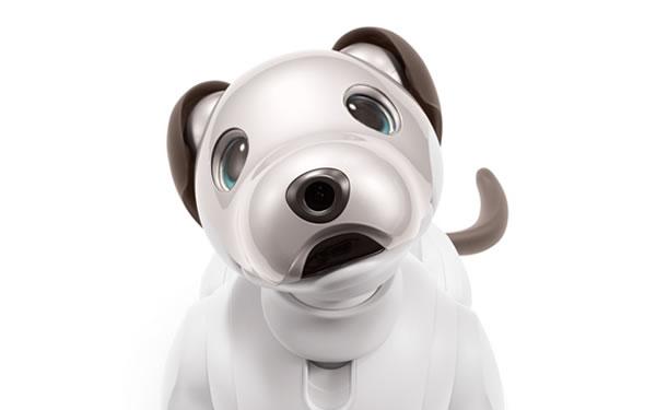 Sony เปิดตัวหุ่นยนต์สุนัข Aibo ใส่ซิมต่อเน็ตได้ มีระบบ Deep learning วิเคราะห์พฤติกรรม