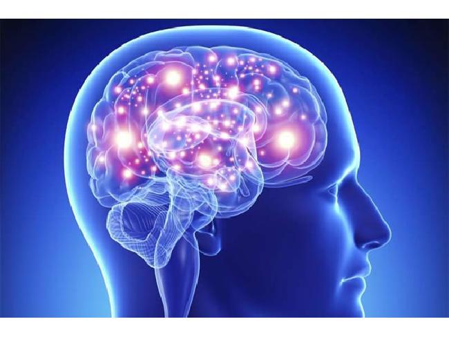 นักวิจัยคิดค้นชิปเซ็ตฝังสมองมุนษย์ เพิ่มประสิทธิภาพการจดจำได้ดียิ่งขึ้น